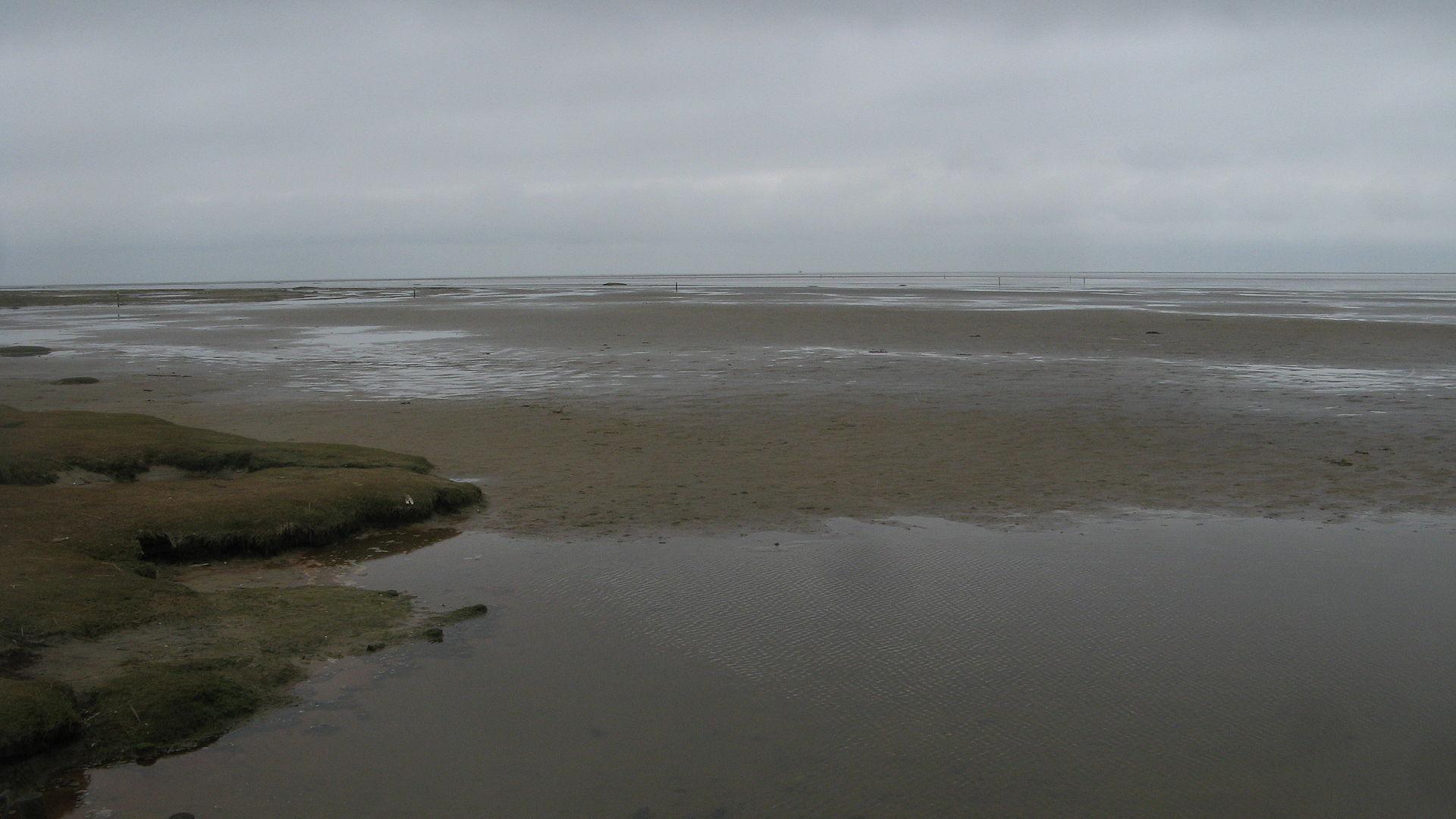 ทะเลวาดเดน-ชายหาด