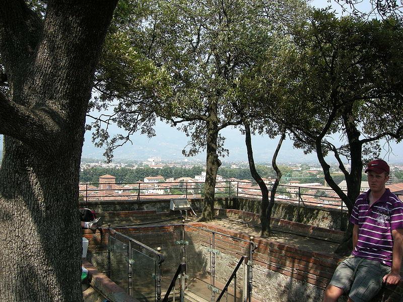 หอคอยกุยนีจี-ต้นไม้ด้่านบน