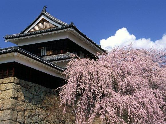 10 ปราสาทญี่ปุ่นที่ไม่ควรพลาดมาเที่ยว-ปราสาทอุเอดะ
