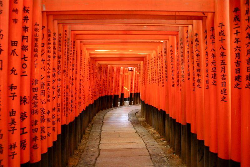 10 วัดเเละศาลเจ้าของญี่ปุ่นที่น่ามาเที่ยว-ศาลเจ้าฟูชิมิ อินะริ
