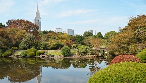 10 สถานที่ยอดนิยมสำหรับชมซากุระบาน -สวนชินจุกุเกียงเอ็ง