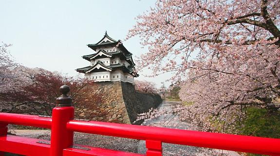 10 สถานที่ยอดนิยมสำหรับชมซากุระบาน -สวนฮิโรซากิ