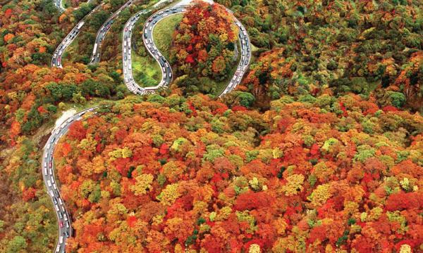 10 เเหล่งชิคสำหรับชมใบไม้เปลี่ยนสีในญี่ปุ่น -อิโรฮะซะกะ